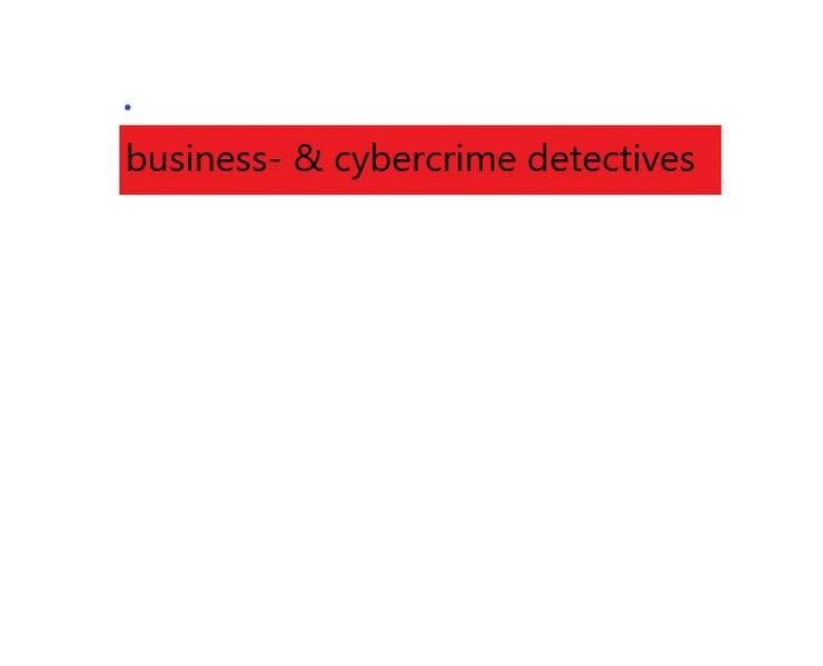 Biete umfangreiche Analyse undBeratungim Bereich Cybercrime, Finanz- und Wirtschaftskriminalität inkl. Vorbeugung