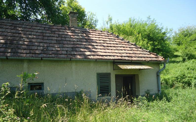 Wein Haus in Zalacsany Ungarn