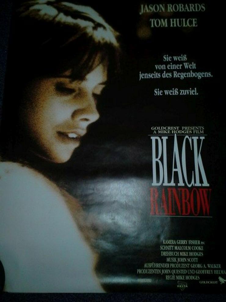 1989 Rosanna Arquette Black Rainbow Kino Plakat A1