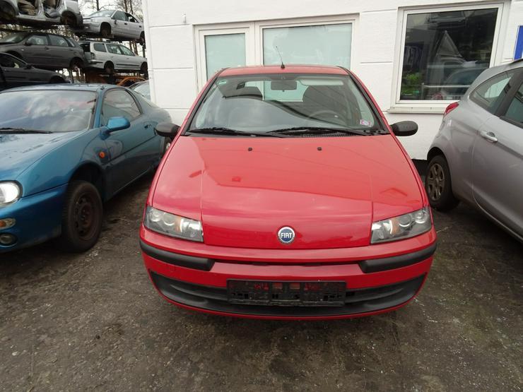 Schlachtfest Fiat Punto   210034