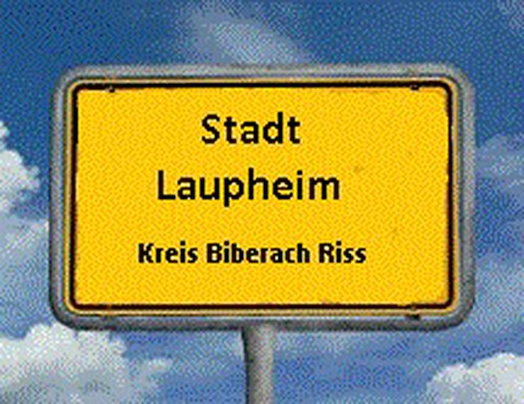 Symphatischer Single Sucht eine Gemütliche Wohnung in 88471 Laupheim