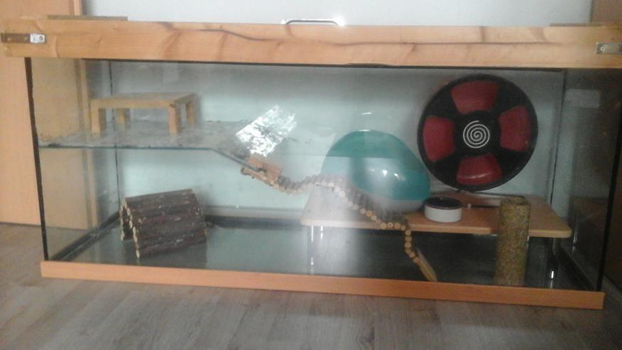 Nagarium, Käfig, Stall, Terrarium