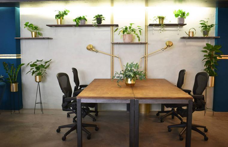 Bild 5: Arbeitsplatz in grünem und persönlichem Ambiente