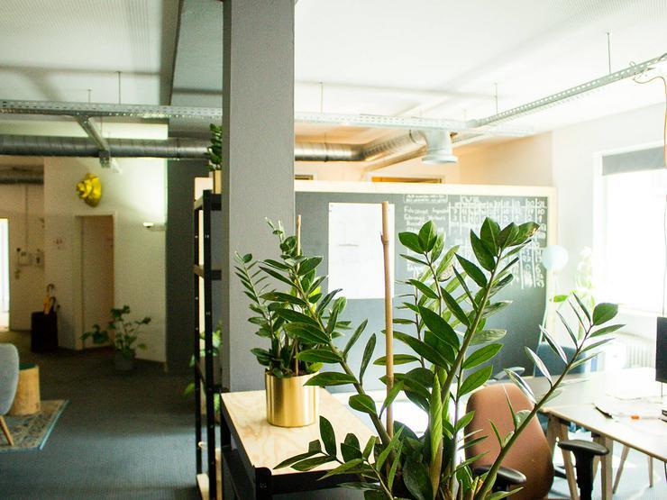 BASE Co-Working: A new home for your Start-Up - Büro & Gewerbeflächen mieten - Bild 1