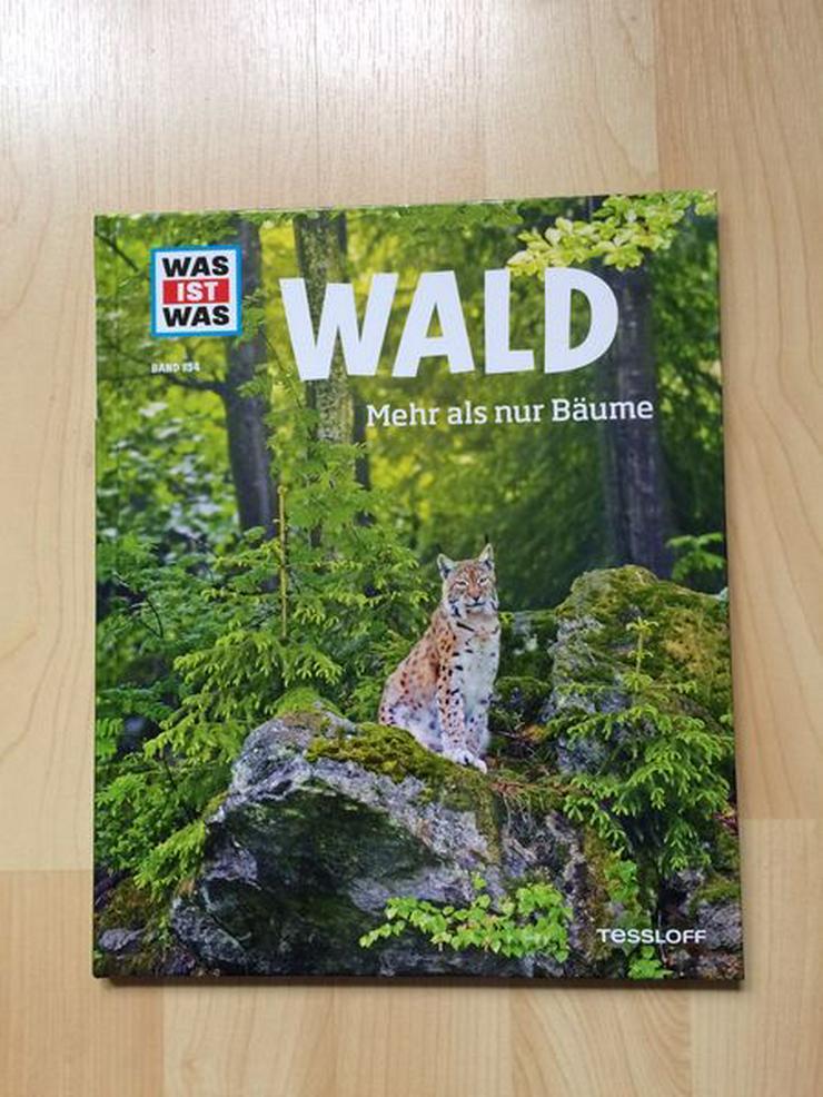UNGELESEN / Kinderbuch - WAS IST WAS Band 134: Wald