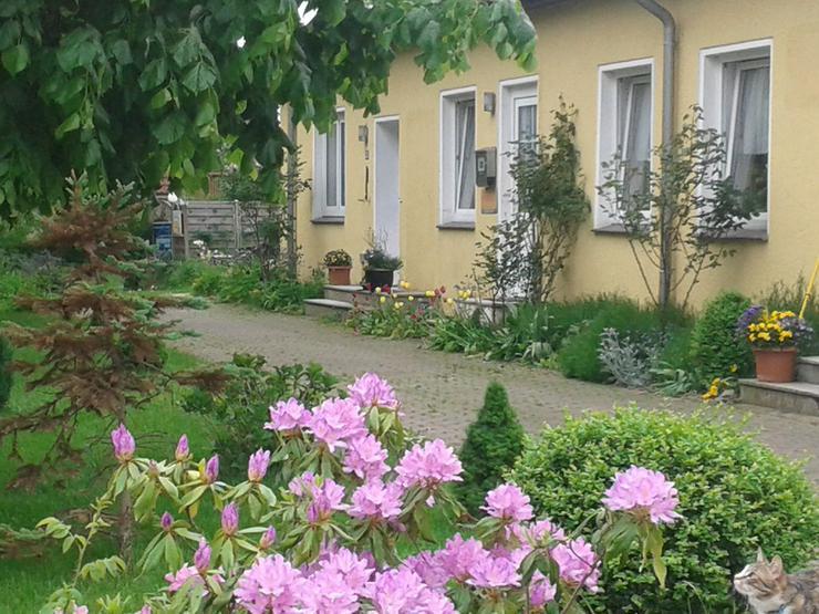 Ferienwohnung 2 Pers.im Ostseebad Boltenhagen