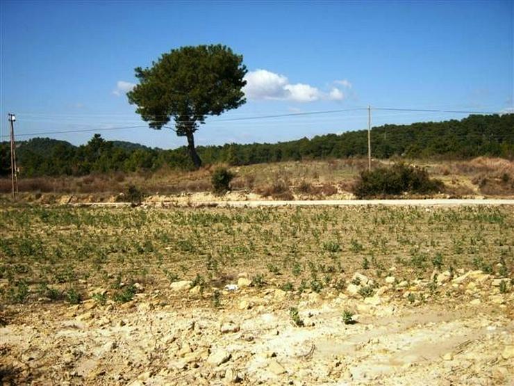 Bild 5: 667 qm Baugrundstück in Alanya Avsallar mit TOP Panorama