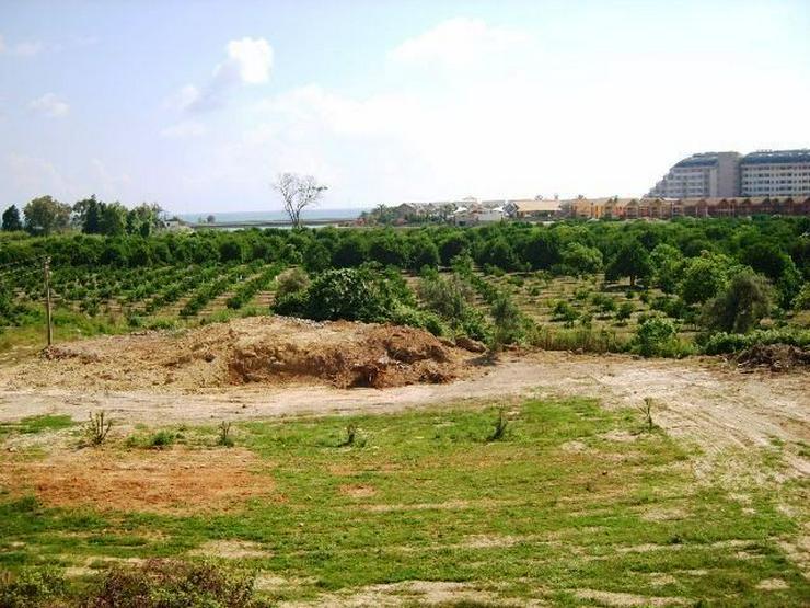 1258 qm Baugrundstück in Alanya Türkler mit TOP Panorama