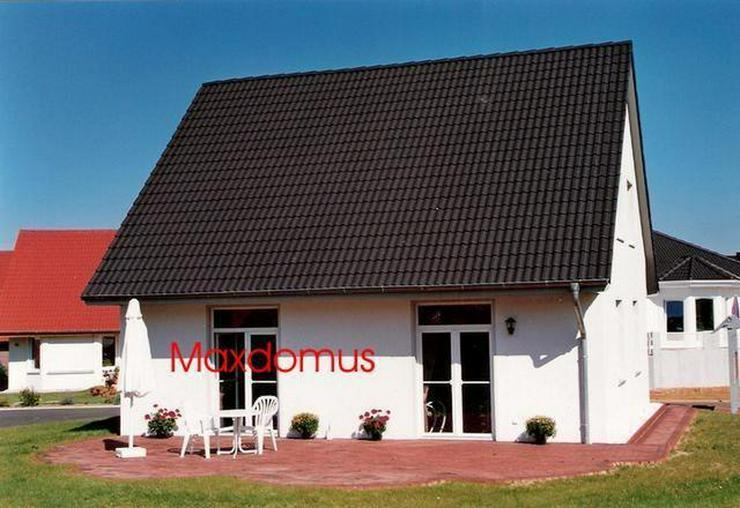 """maxdomus Deutschland """" Wir leben Häuser"""" Haus Trento Massivhaus"""