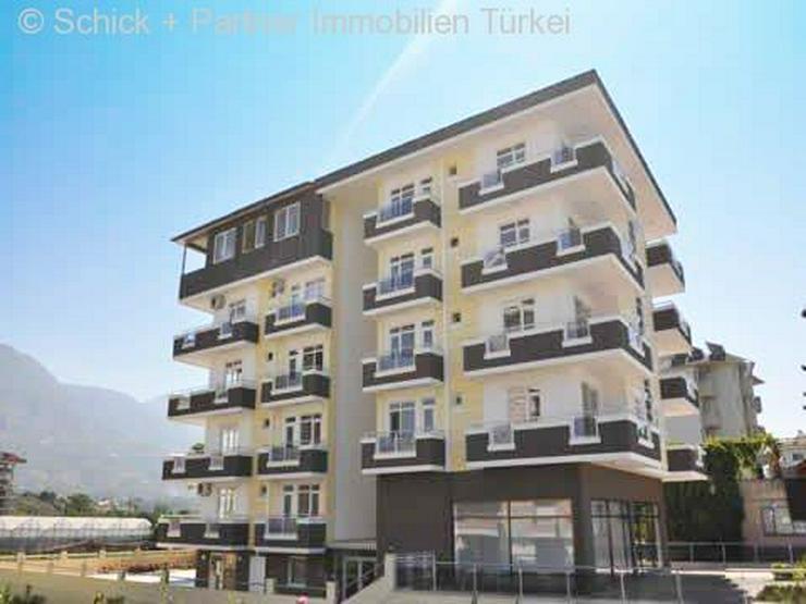 Bild 2: Sehr schönes Appartement direkt am Meer mit Bergblick