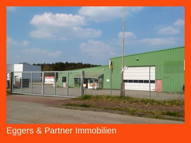 Lagerhalle mit Verkaufsraum und Büro - Gewerbeimmobilie kaufen - Bild 1