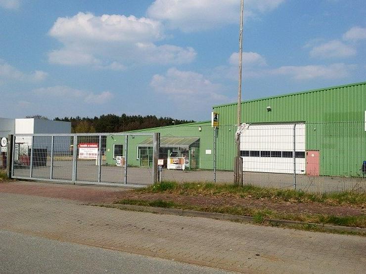 Bild 2: Lagerhalle mit Verkaufsraum und Büro
