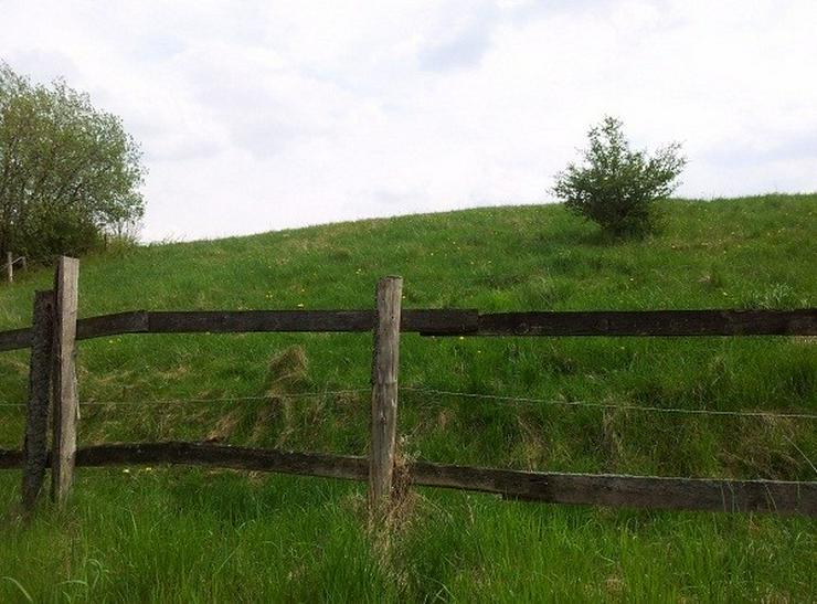 Bild 3: Ackerland und Grünfläche