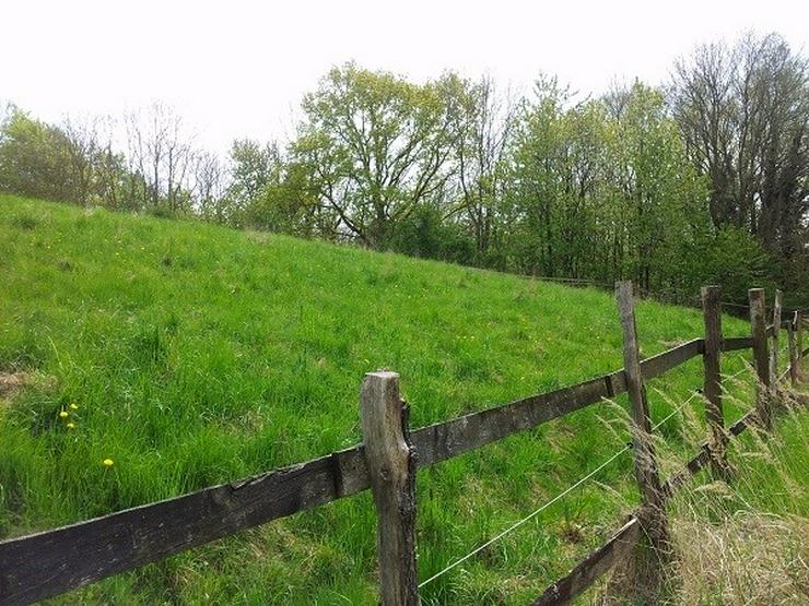 Bild 4: Ackerland und Grünfläche