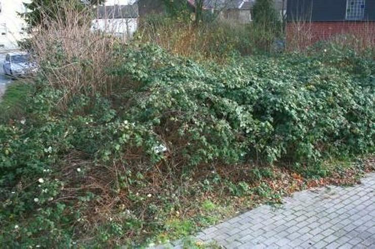 Bild 3: preiswertes Baugrundstück in Hückelhoven-Millich