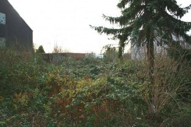 Bild 4: preiswertes Baugrundstück in Hückelhoven-Millich