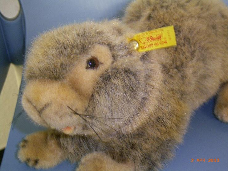 Steiff Murmeltier - Teddybären & Kuscheltiere - Bild 1