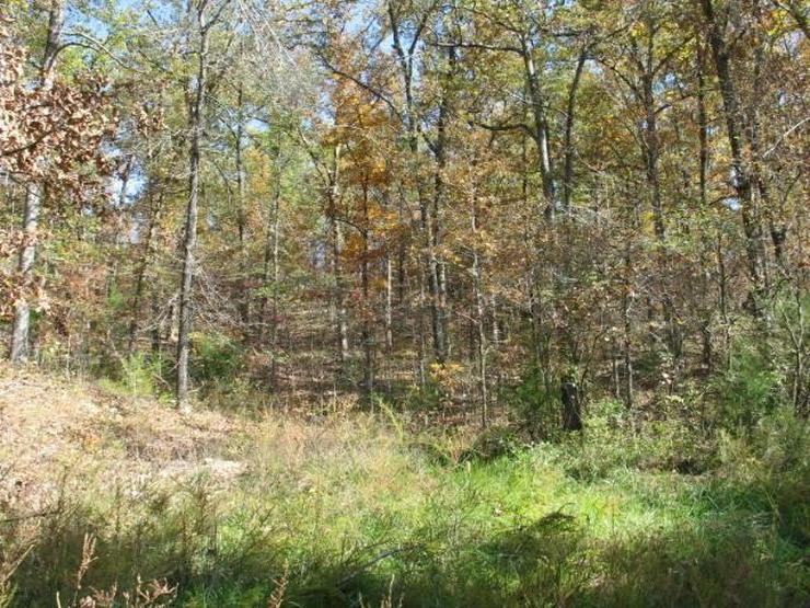 Schnäppchen - Grundstück kaufen - Bild 1
