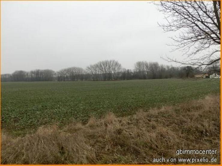 Bild 6: Landschaftsblick Richtung Teich über die Felder..... hier soll mein ZUHAUSE sein...