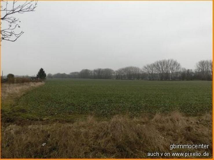 Bild 2: Landschaftsblick Richtung Teich über die Felder..... hier soll mein ZUHAUSE sein...
