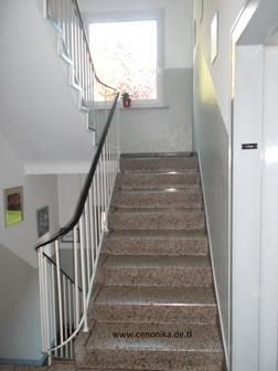 Treppenhausreinigung Sie - Haushaltshilfe & Reinigung - Bild 1