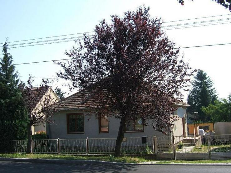 Renoviertes Einfamilienhaus 13 Km vom Plattensee - Haus kaufen - Bild 1