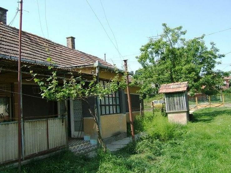 Bild 4: Preiswertes Bauernhaus mit Weinkeller