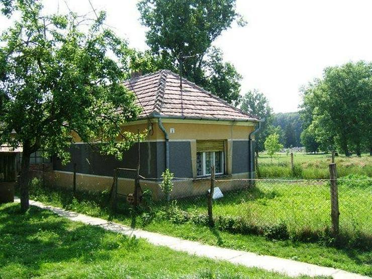 Preiswertes Bauernhaus mit Weinkeller - Haus kaufen - Bild 1
