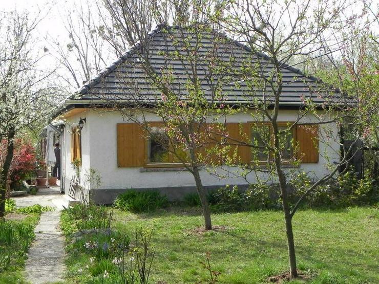 Bild 3: Freistehendes , ebenerdiges Landhaus in Thermalbad und Balatonnähe