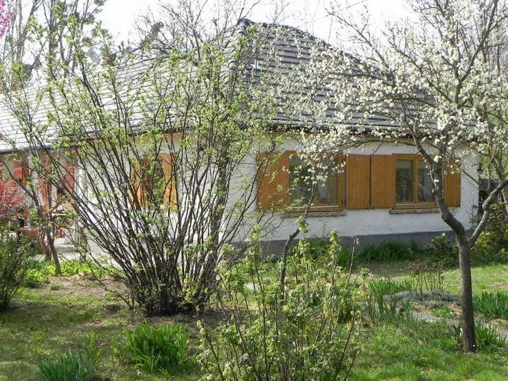 Freistehendes , ebenerdiges Landhaus in Thermalbad und Balatonnähe - Wohnung kaufen - Bild 1