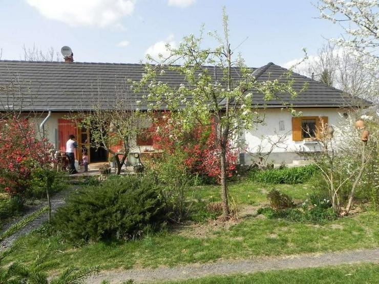 Bild 2: Freistehendes , ebenerdiges Landhaus in Thermalbad und Balatonnähe