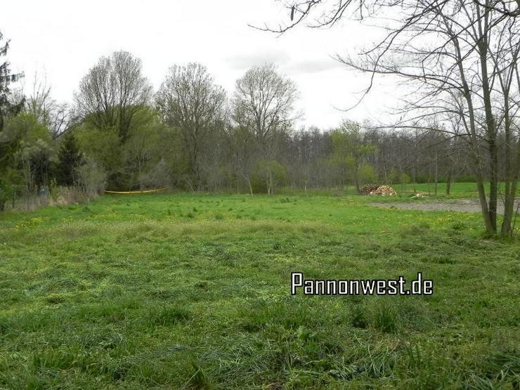 Bild 9: Bauernhaus zum Grundstückspreis in Ungarn