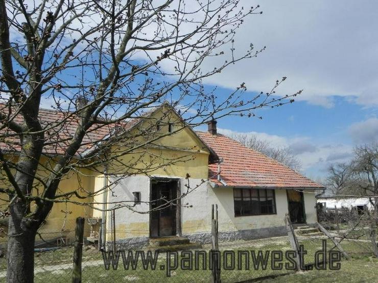 Günstiges renovierungsbedürftiges Bauernhaus mit schönem Grundstück - Haus kaufen - Bild 1