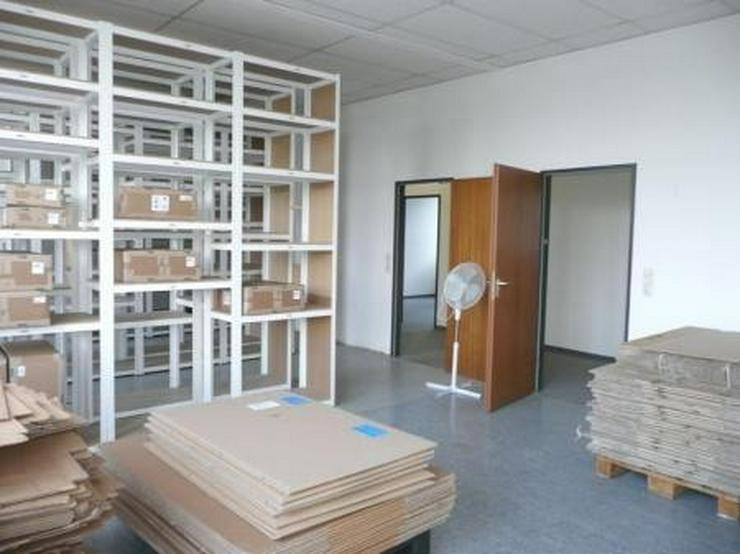 PROVISIONSFREI - Bürofläche mit Lagermöglichkeit/Ausstellung, 422 qm
