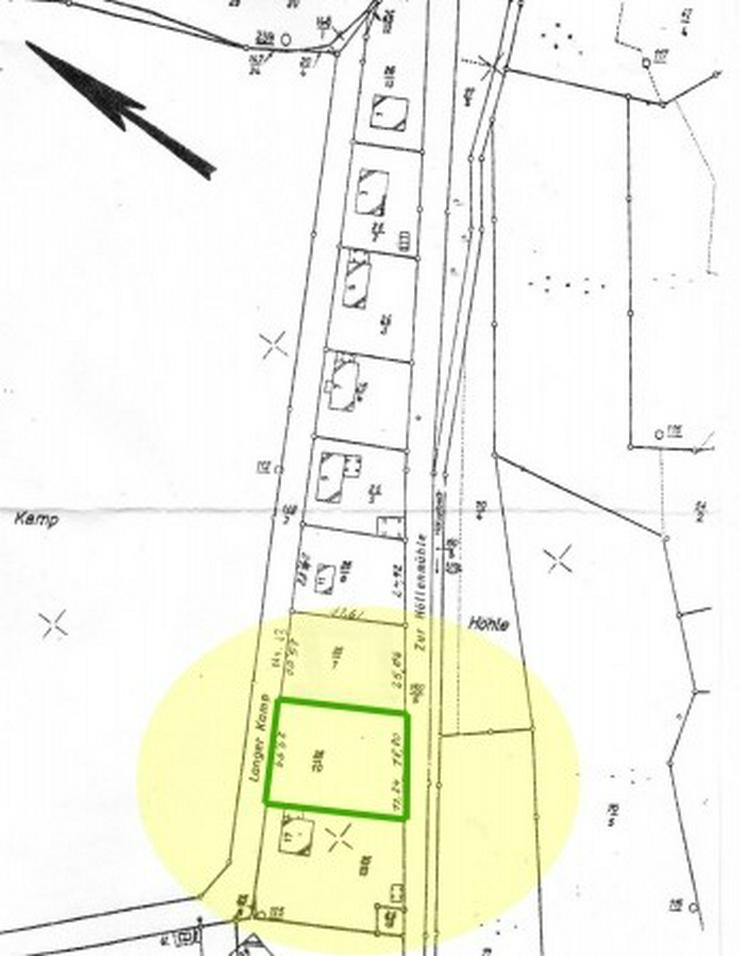 Bild 3: Traumhaftes Baugrundstück oder Gartengrundstück in Hanglage